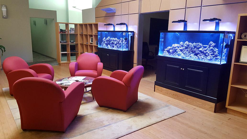 Data-Basics Lounge and Technology Library